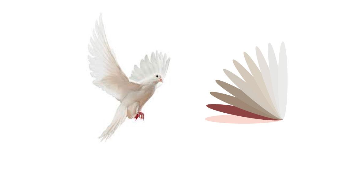 La colombe et l'éventail de plumes colorés