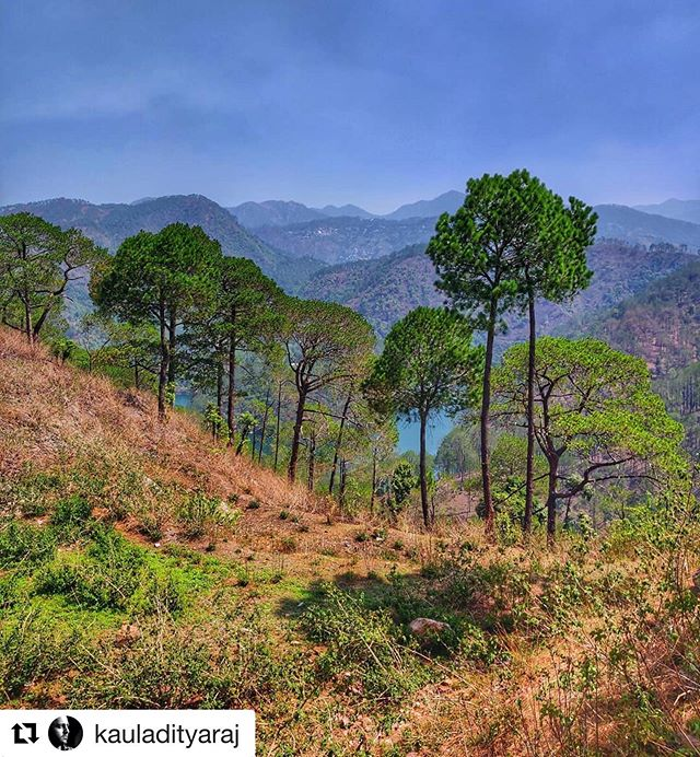 #Repost @kauladityaraj with @get_repost ・・・ In the lap of nature, far from the madness of life.