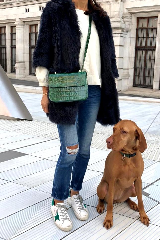 Sicily_dog.jpg