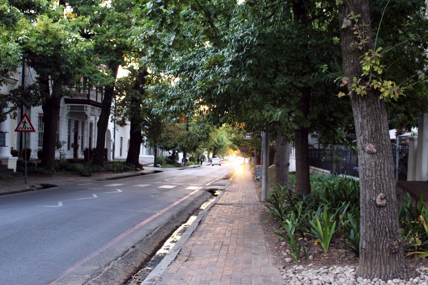 A photo I took on a walk in Stellenbosch, South Africa.