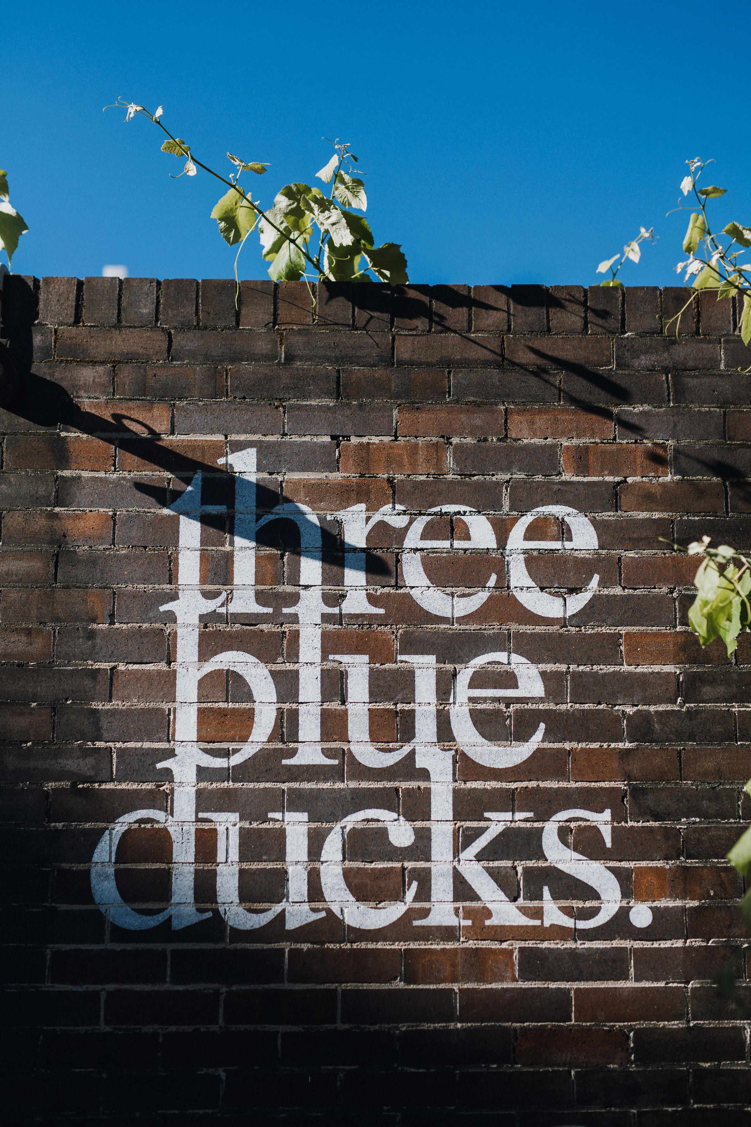 weddings at three blue ducks00003.jpg
