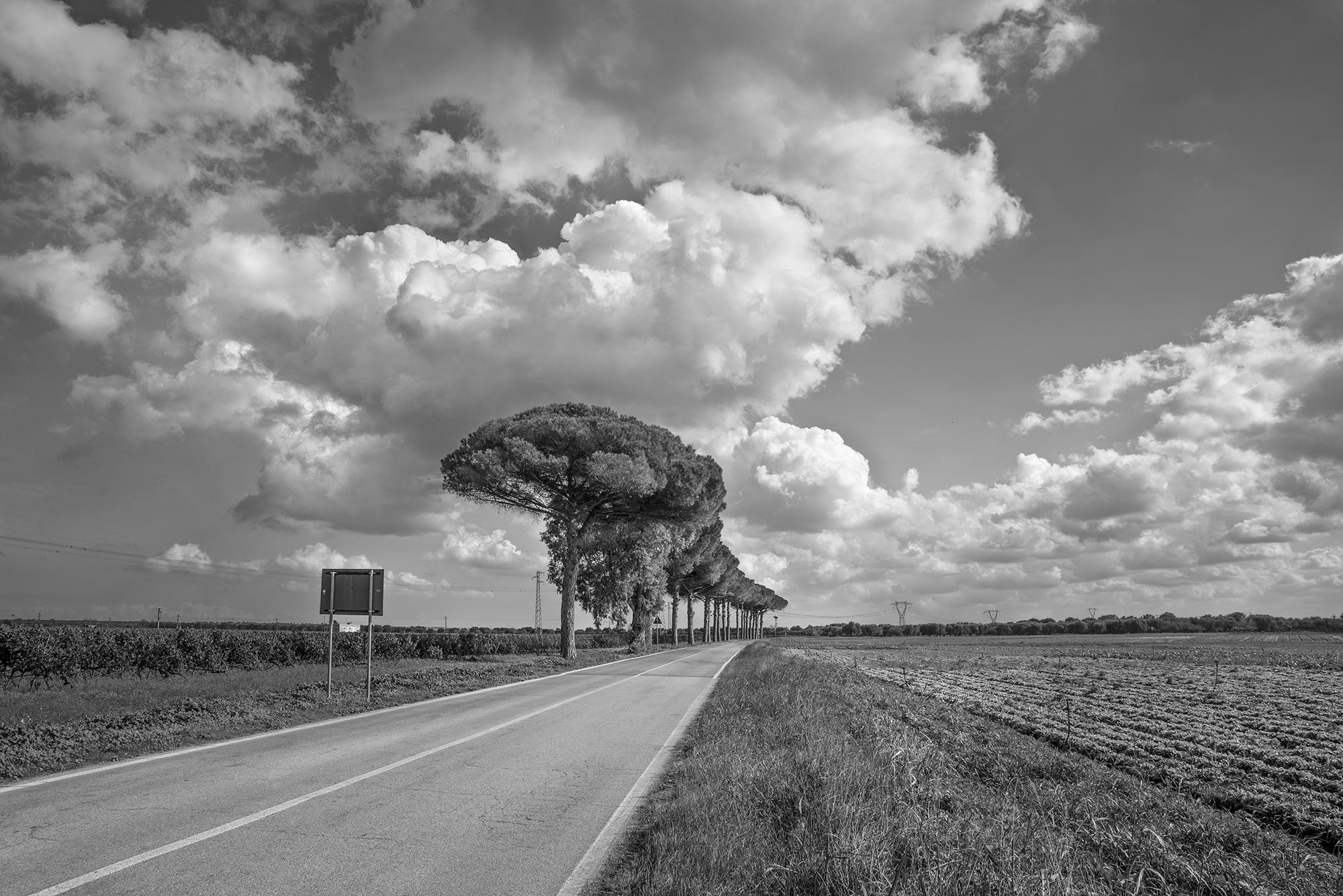 To Lecce