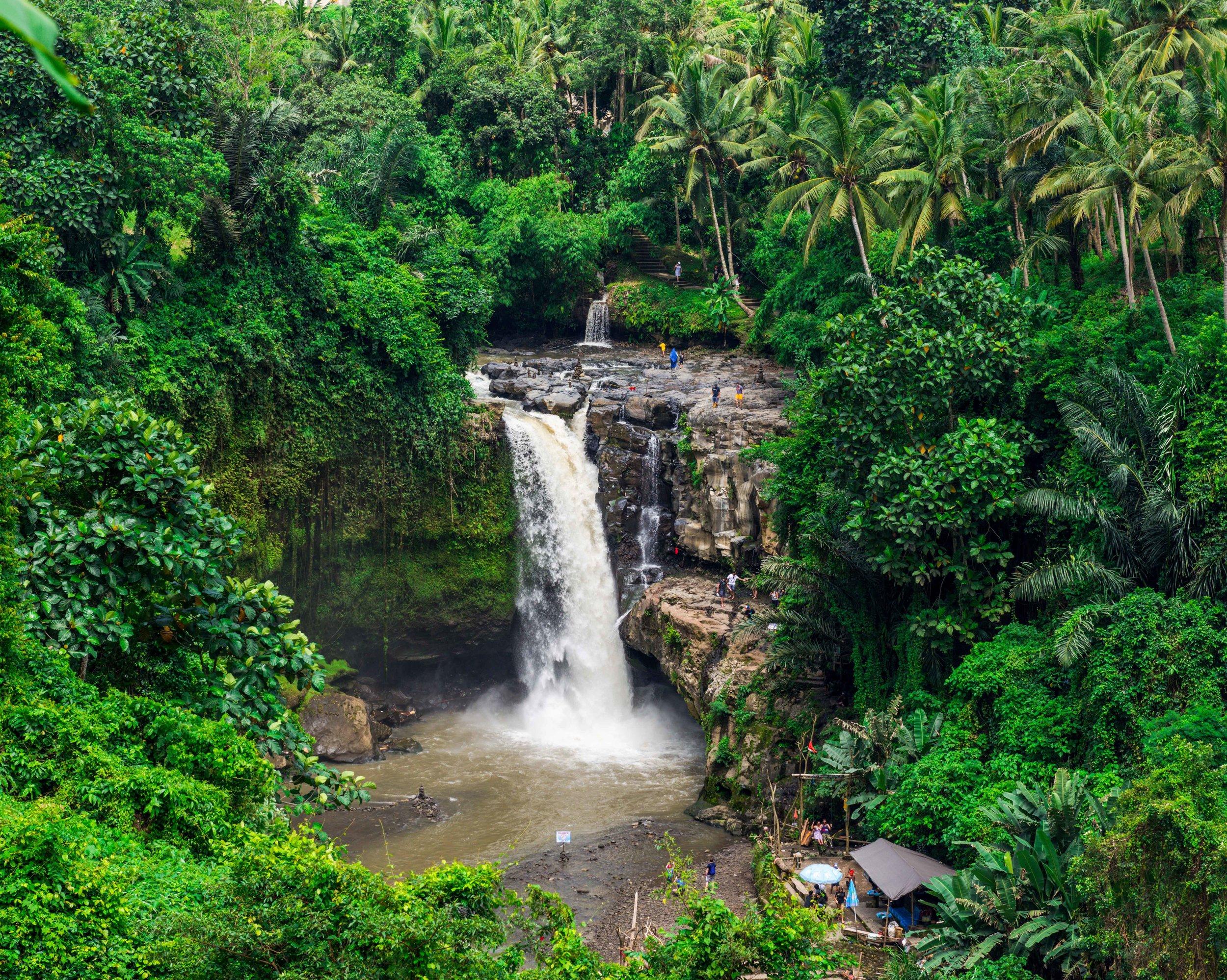 Tegenungan Waterfall -4.jpg