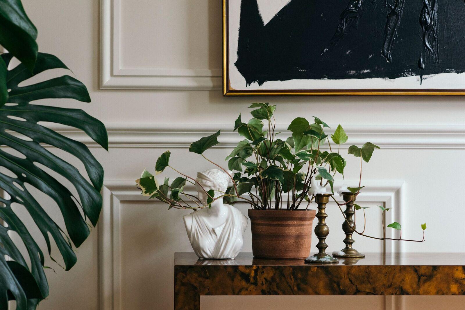 Photos: Augusta Sagnelli  Styling: Jo Gremillion  Interiors: Rosa Dunlap
