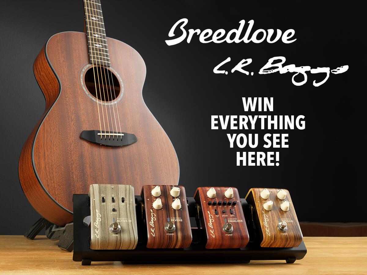 breedlove-lr-baggs-promo-2018.jpg