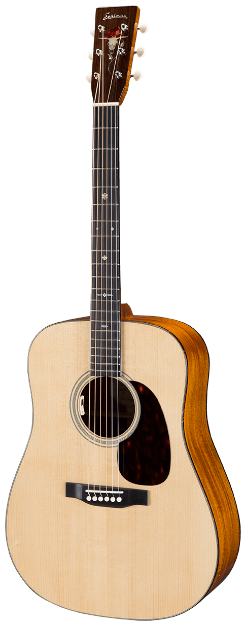 eastman-guitar-e10D.png