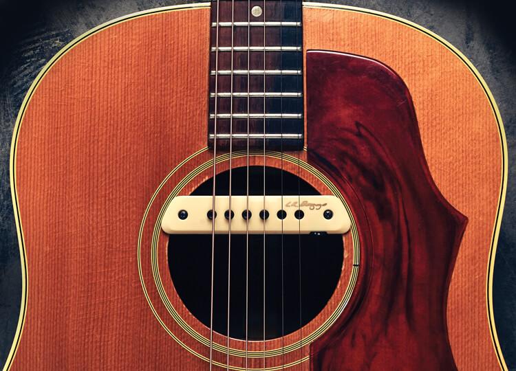 LR Baggs M1 Active Acoustic Guitar Pickup