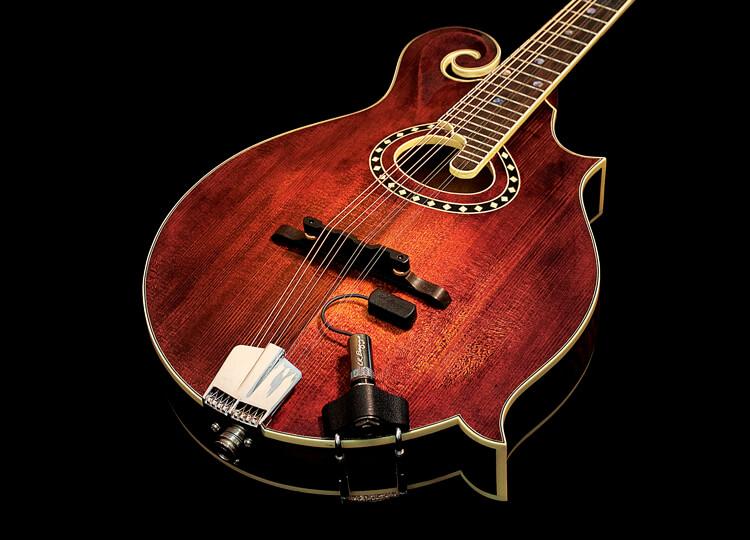 lr-baggs-radius-mandolin-pickup-1.jpg