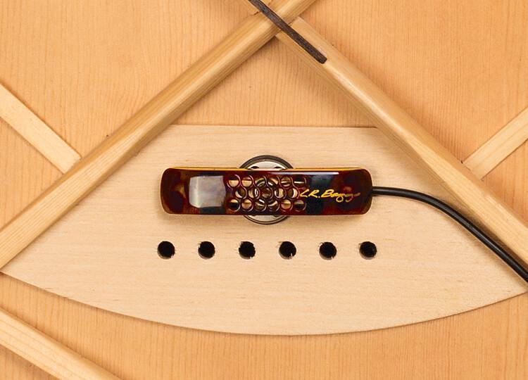 Lyric Acoustic Guitar Microphone