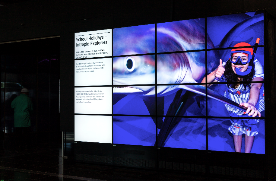 Auckland-Museum-Video-Wall-Software