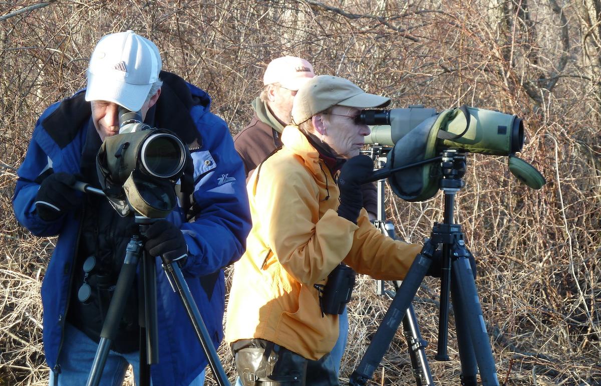 P1040458 Birders w scopes Bolton Flats resized.jpg
