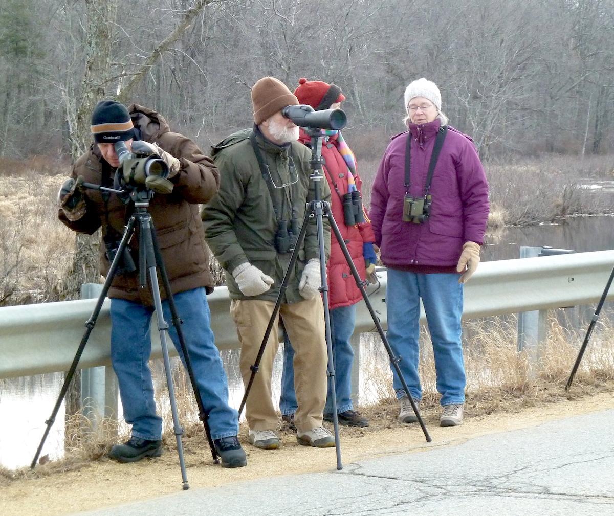 P1040427 Birders w scopes cold day at L Quaboag resized.jpg