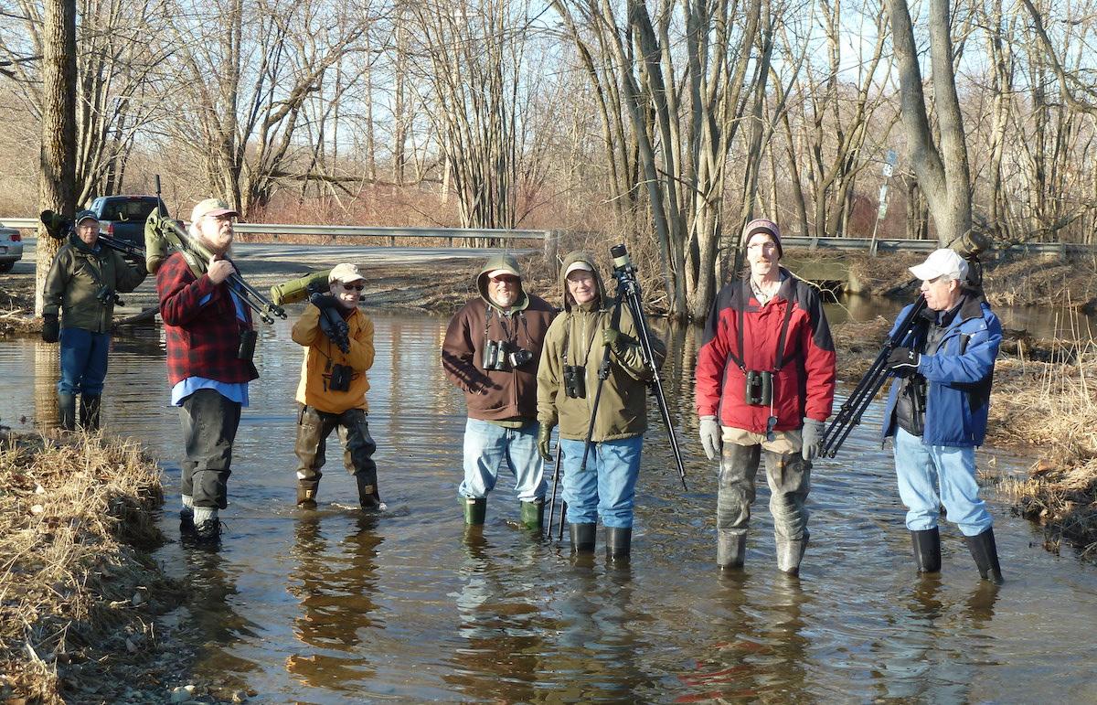 P1040461 Wading birders resized.jpg