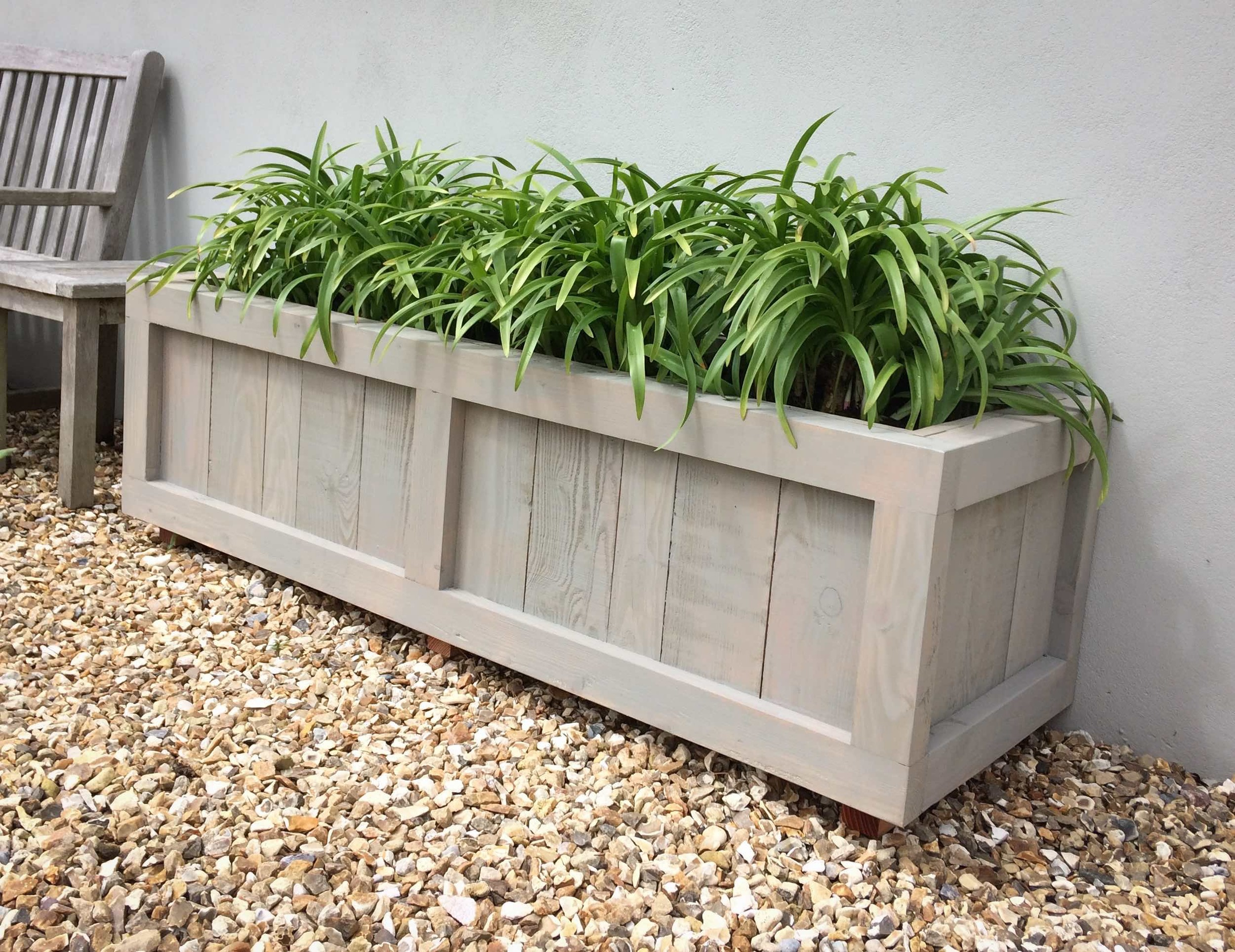 Larch planter
