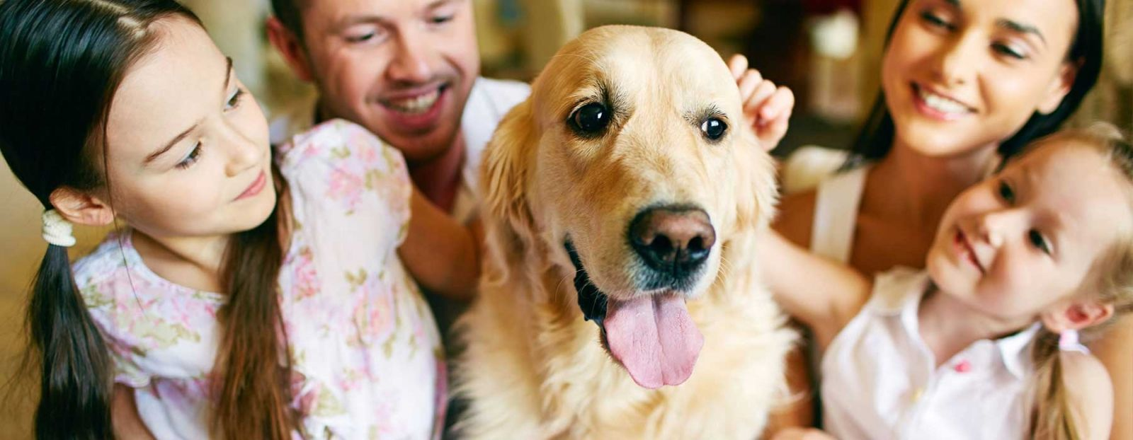 Dog cuddles.jpg