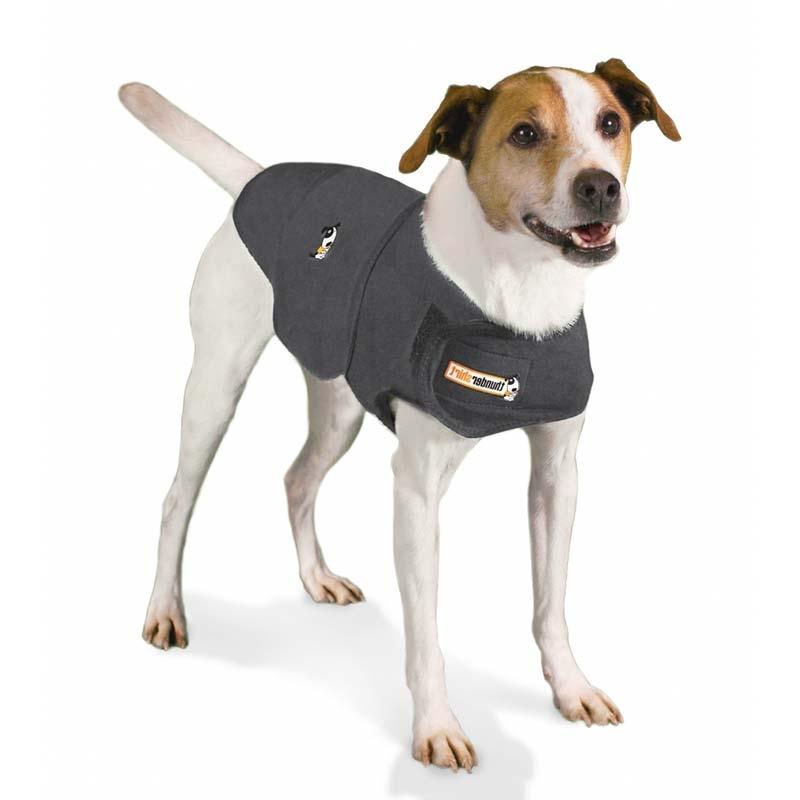 Dog Vest.jpg