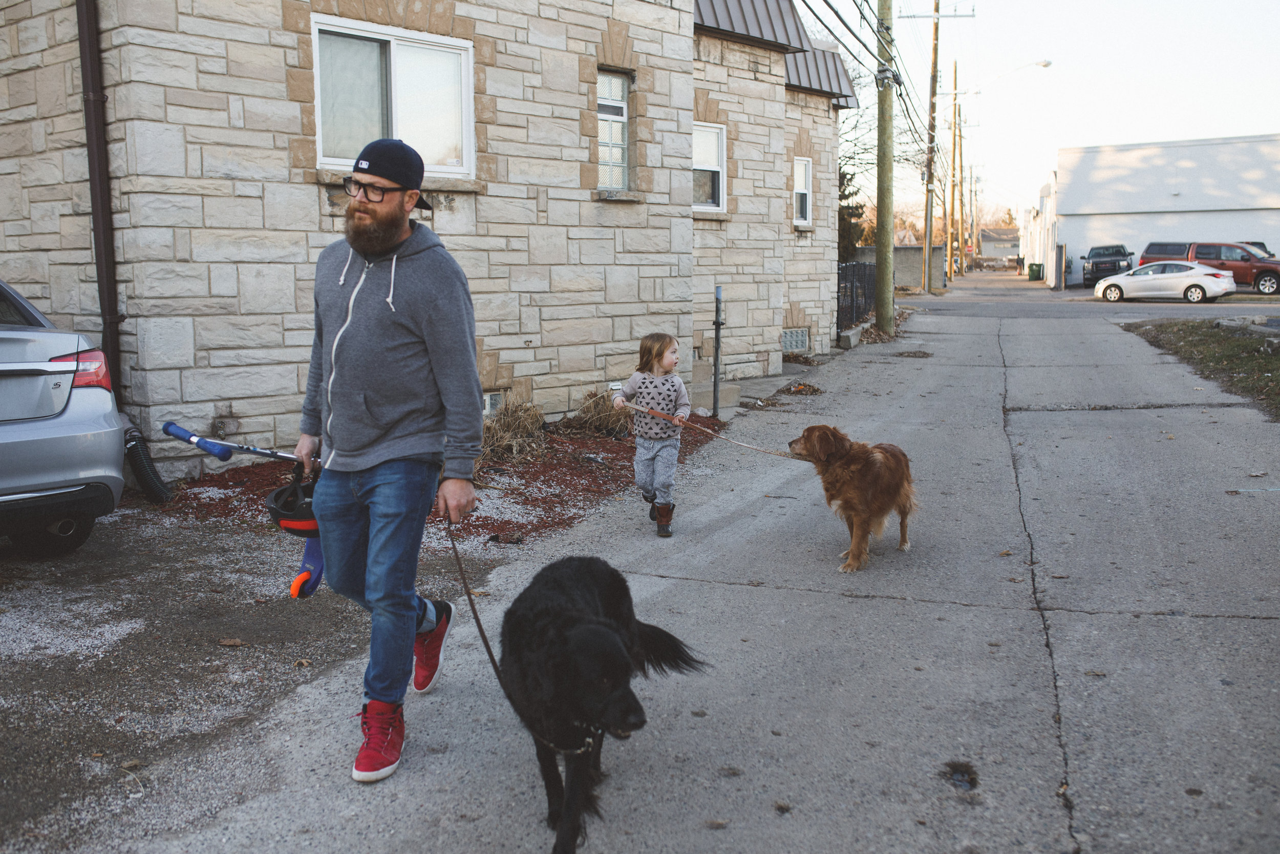 Little boy and dad walking their dogs.