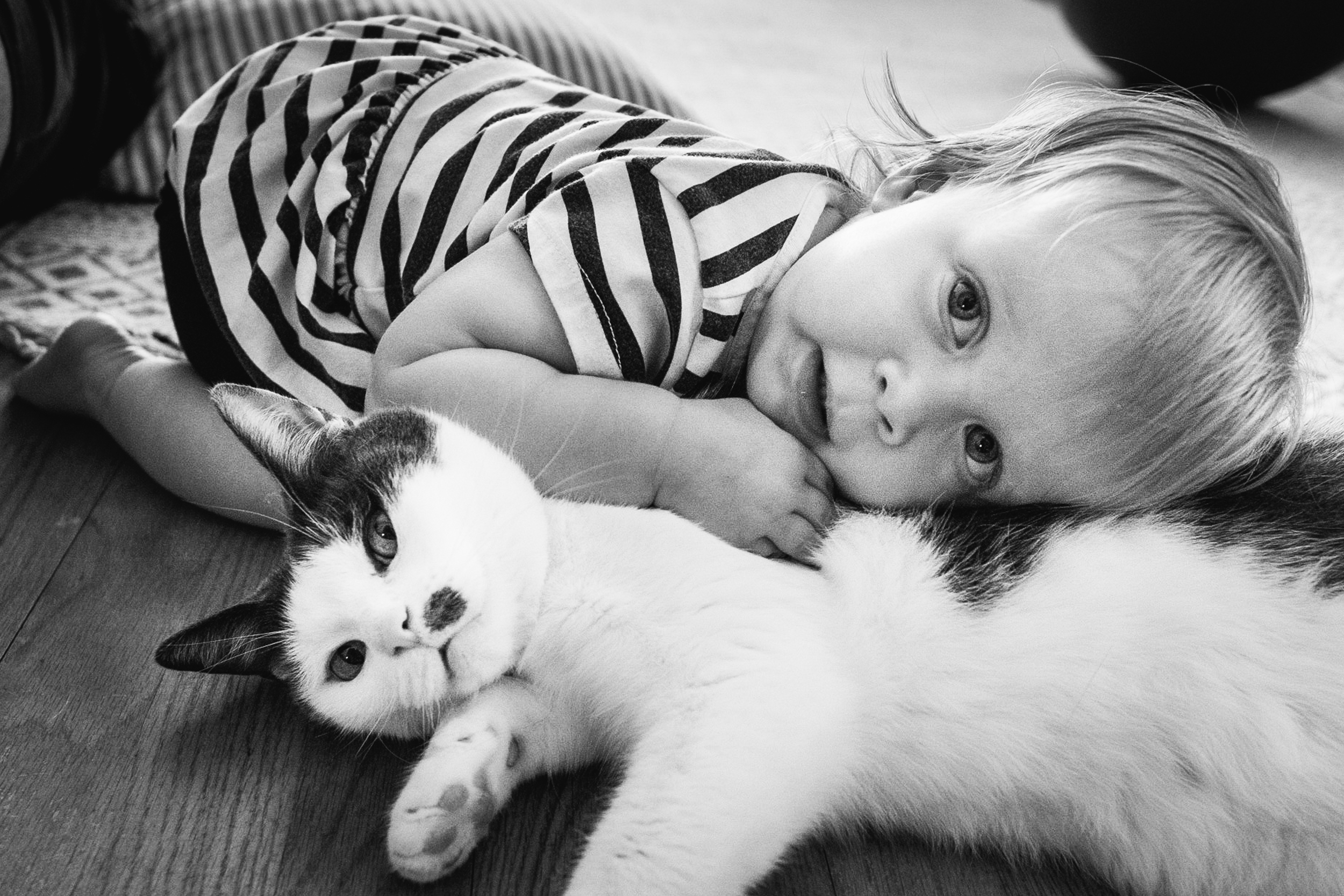 Loving on kitty. Detroit Family Photographer.