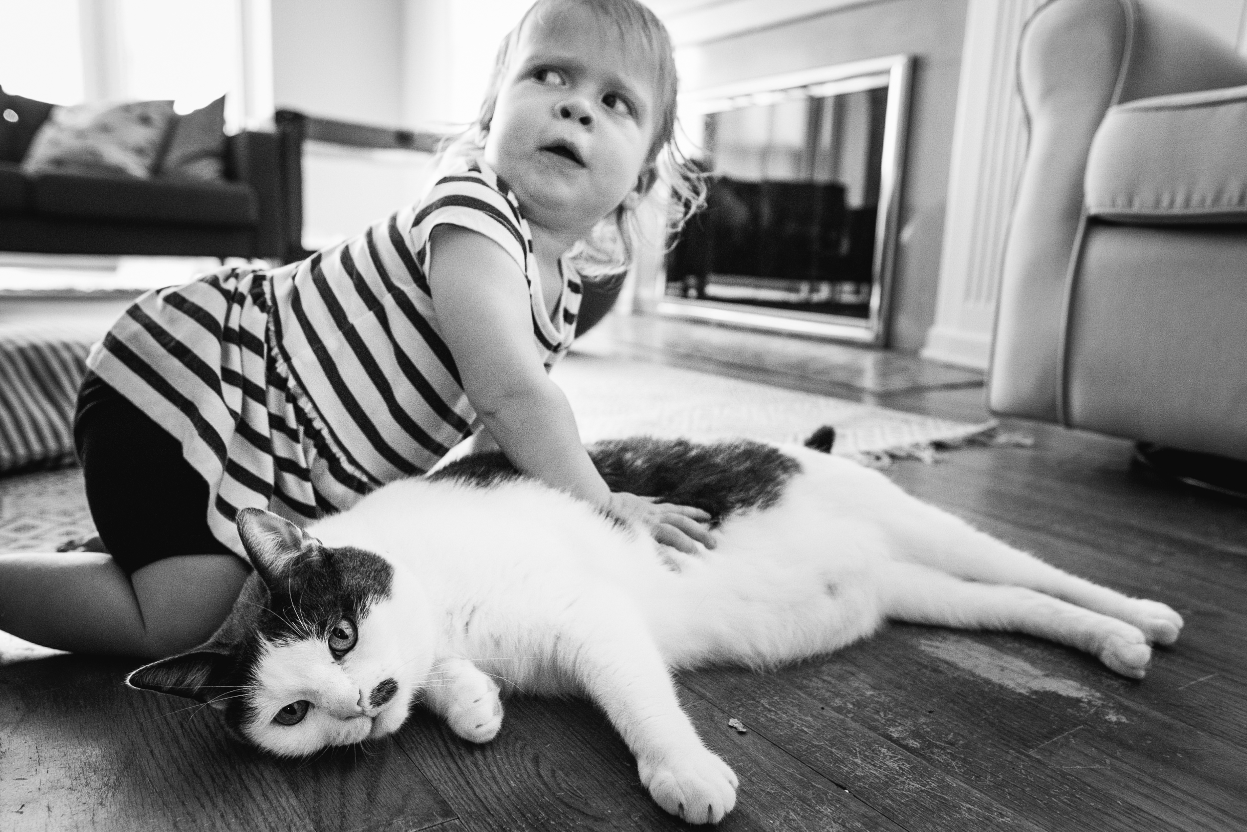 Baby and kitty relationships. Detroit Family Photographer.