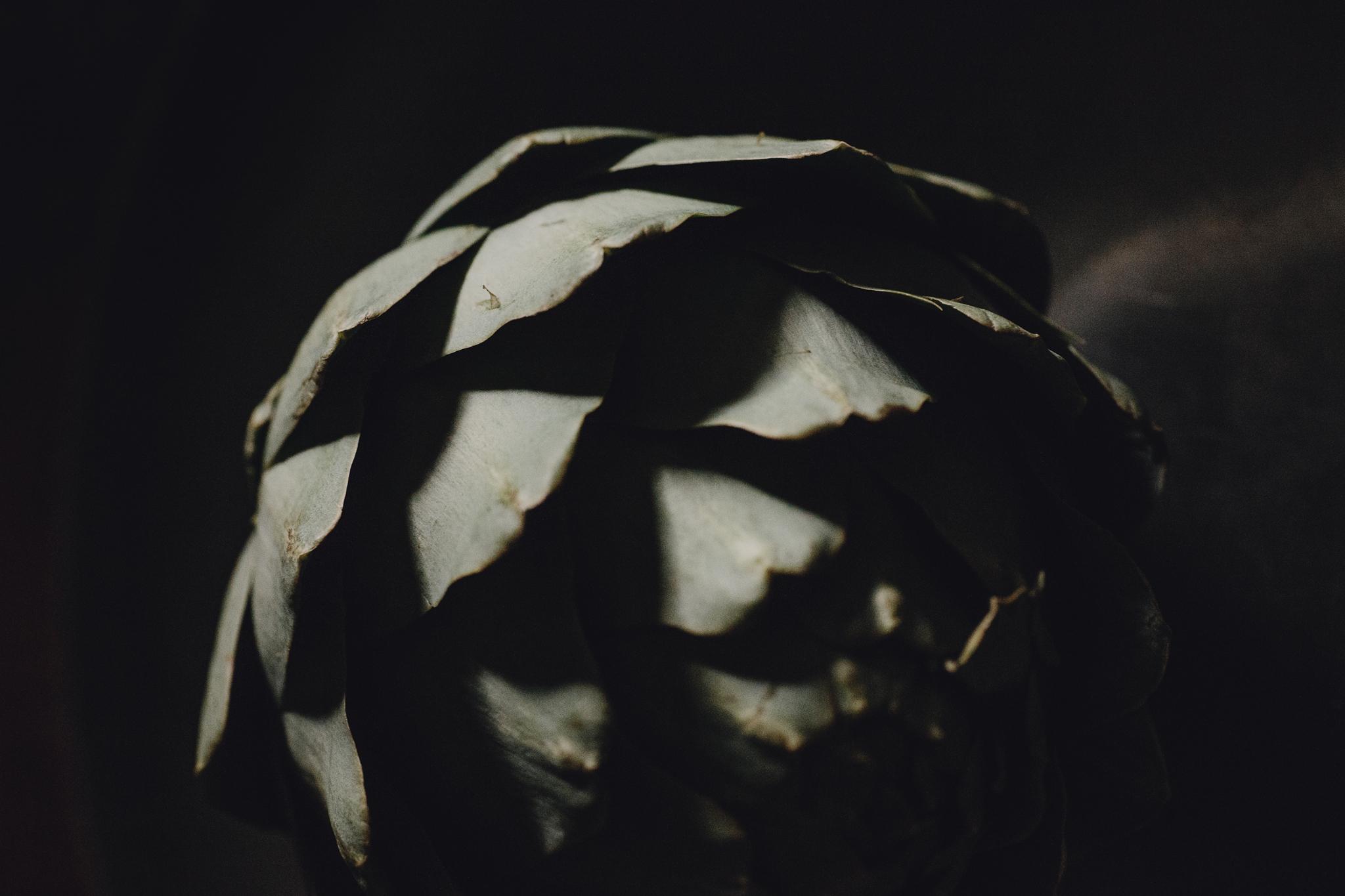 alabaster_abstract_ig_0158.jpg