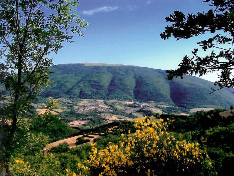 Subasio Park, Assisi, Italy. Photo source: Parco del Monte Subasio