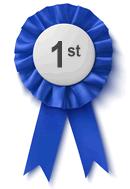 1st Place Award