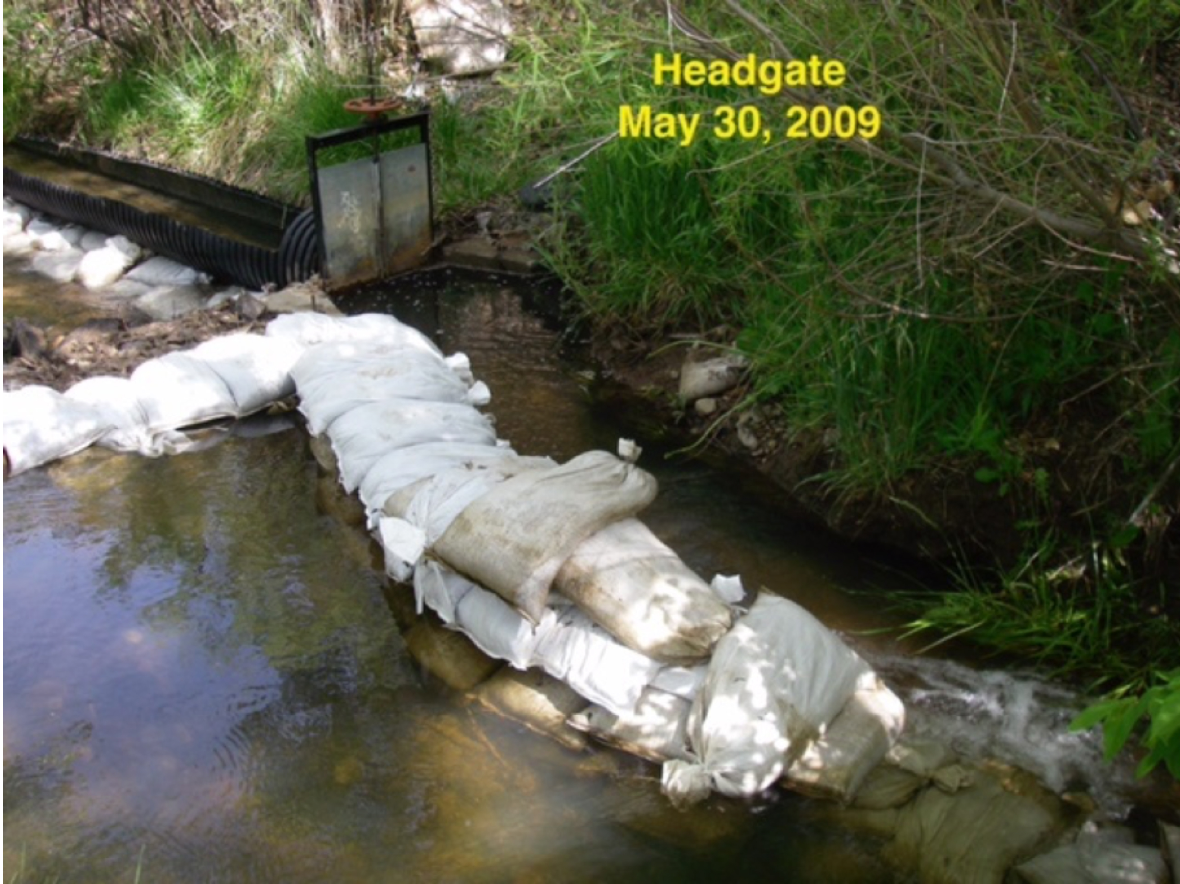 The diversion structure for the Acequia de la Muralla, showing the Santa Fe River in the front left, the sandbag wall, the headgate, and the opened culvert that is the beginning of the ditch. photo by B.C. Rimbeaux
