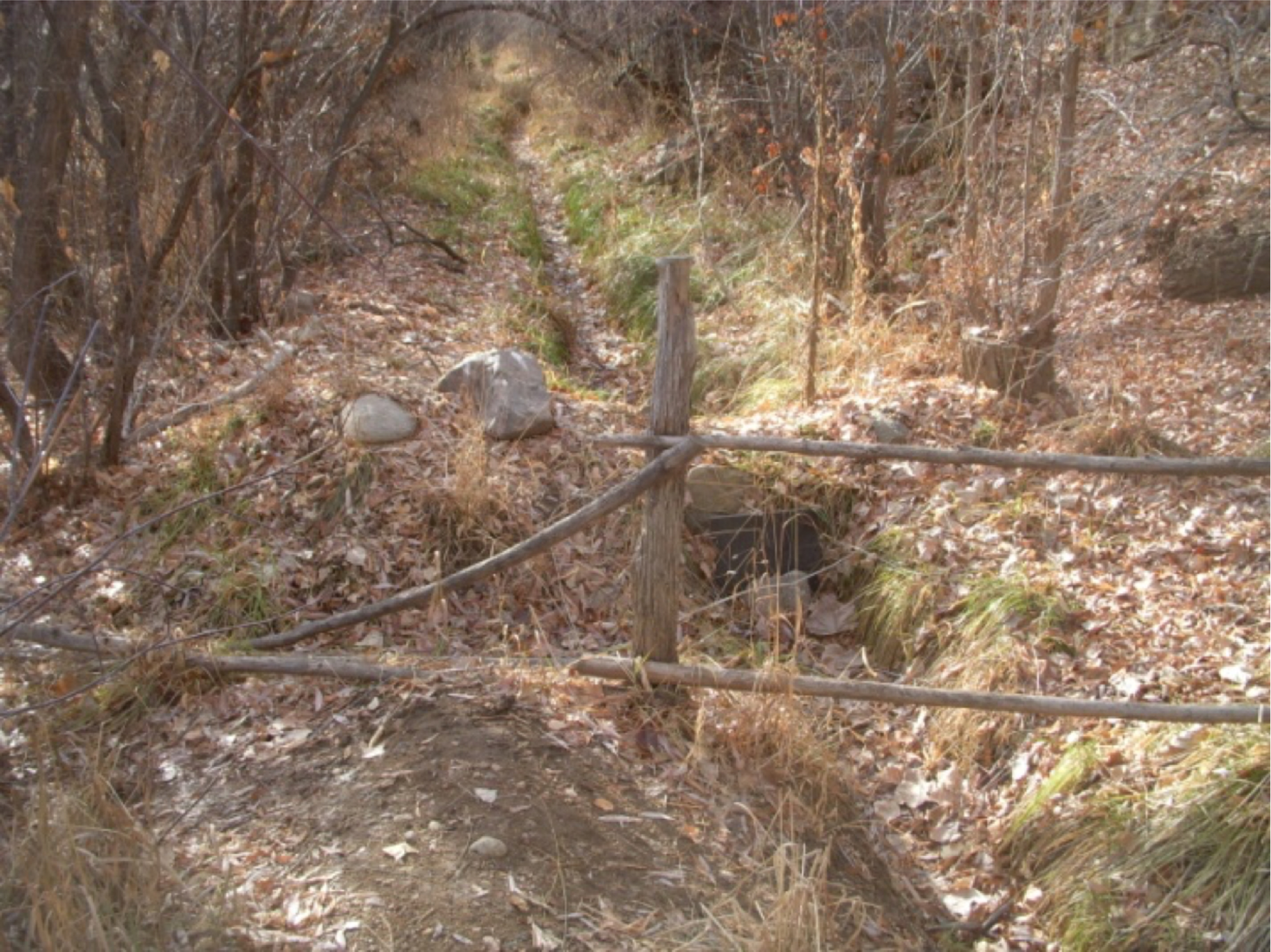 The fence between Armijo Park and the property at 1400A Cerro Gordo. The board controls flow into the acequia, which continues into the private property, or into the ditch on the left which shunts the water back into the river.   photo by the Deborah and Jon Lawrence