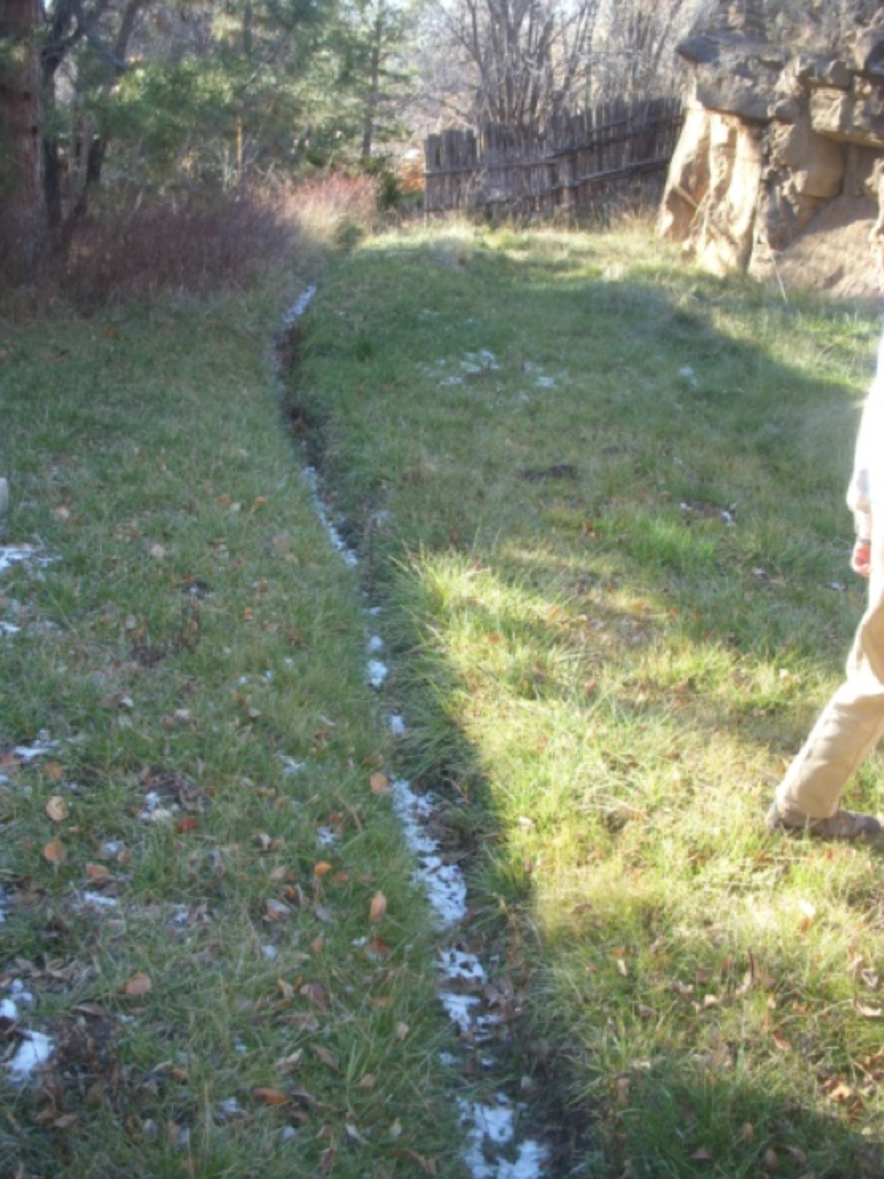 Narrow section of the acequia in the grassy section behind the Krause house.  photo by the Deborah and Jon Lawrence