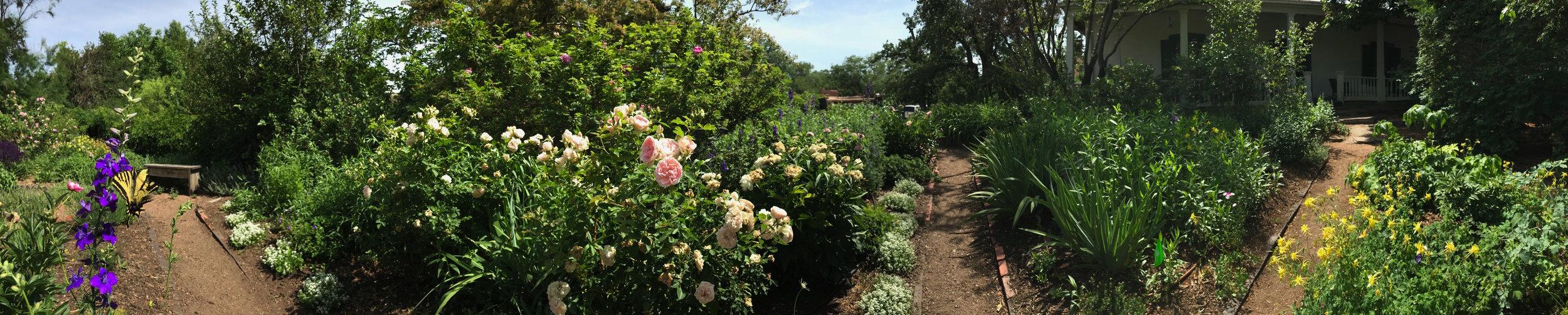 GardenPanoramaJune2018.jpg