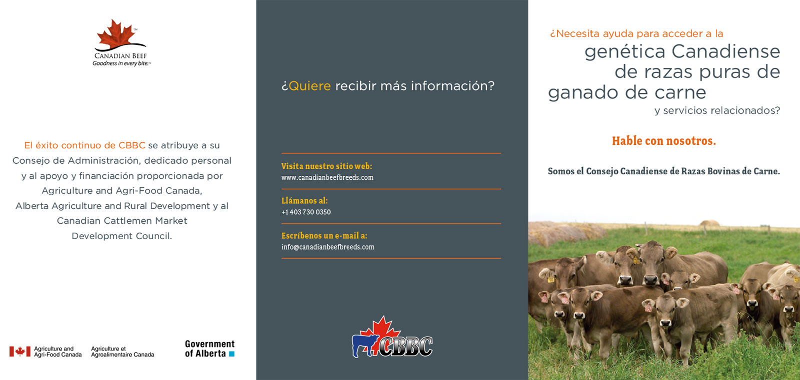 Canadian Beef Breeds Council: purebred beef genetics marketing brochure in Spanish