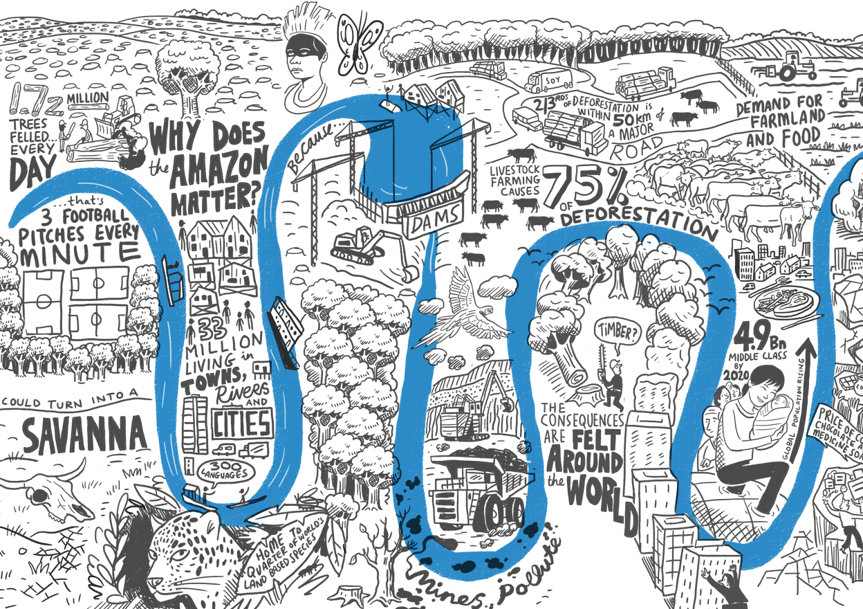 """Why does the Amazon matter?"", an animation for WWF 