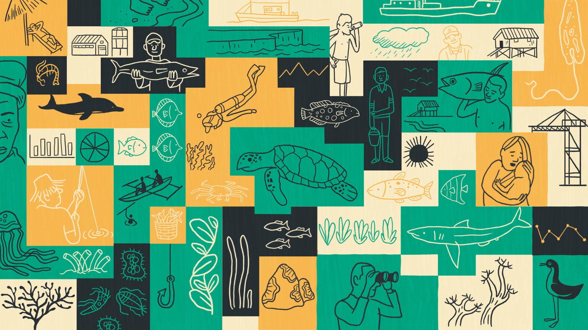 Scriberia Science Communication Visual Storytelling Animation Oxford Sparks