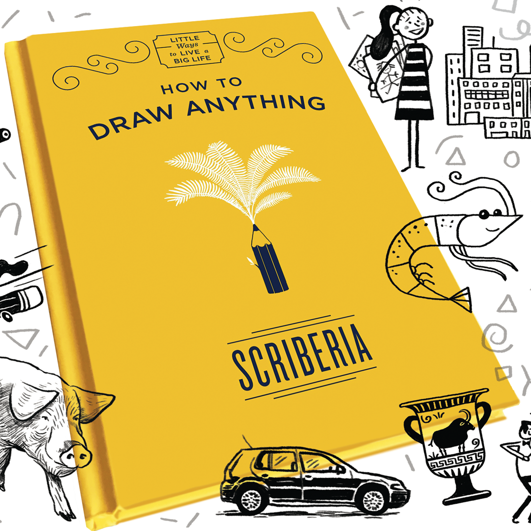 How to draw anything book