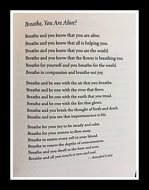 Breathe, You Are Alive!
