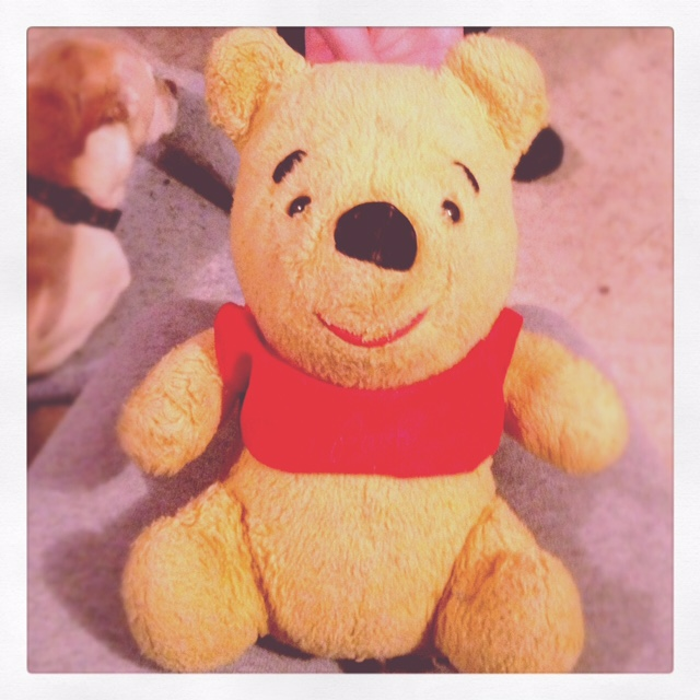 At the time of my adoption I was given a Winnie-The-Pooh by my biological parents. I have treasured this Pooh my entire life. He even went to college with me.