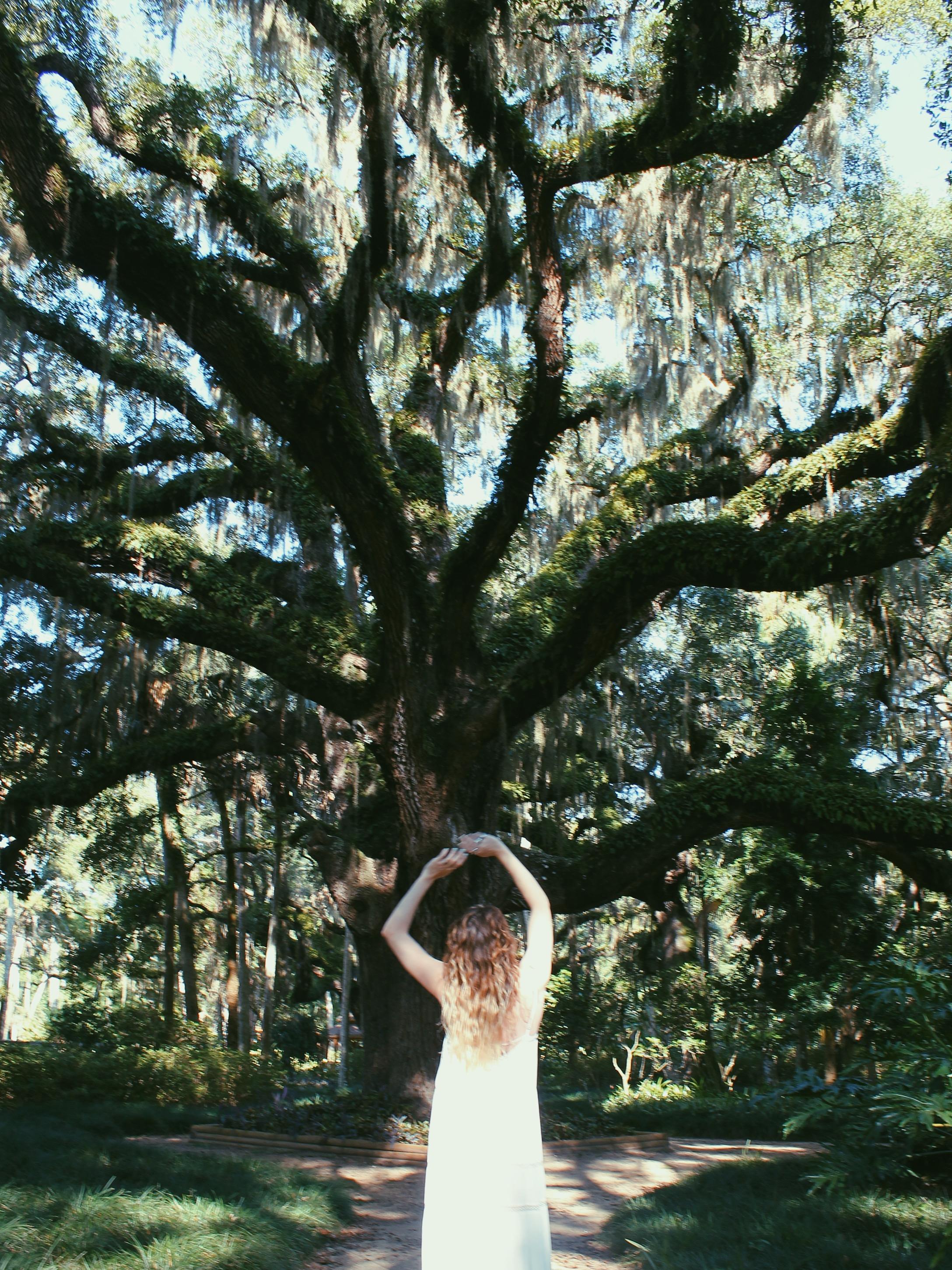 Old Oak: a poem on strength. Read more at Holl & Lane Magazine at www.hollandlanemag.com/blog