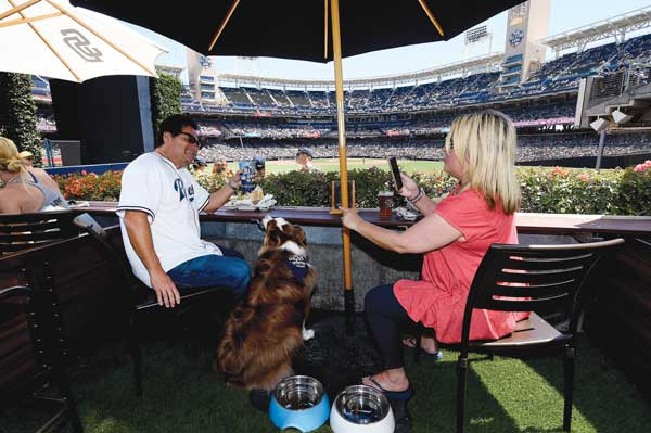 The Barkyard's suites have seats for four adults and room for two pets. Each suite has artificial turf and an umbrella for shade. Photo by: SAN DIEGO PADRES