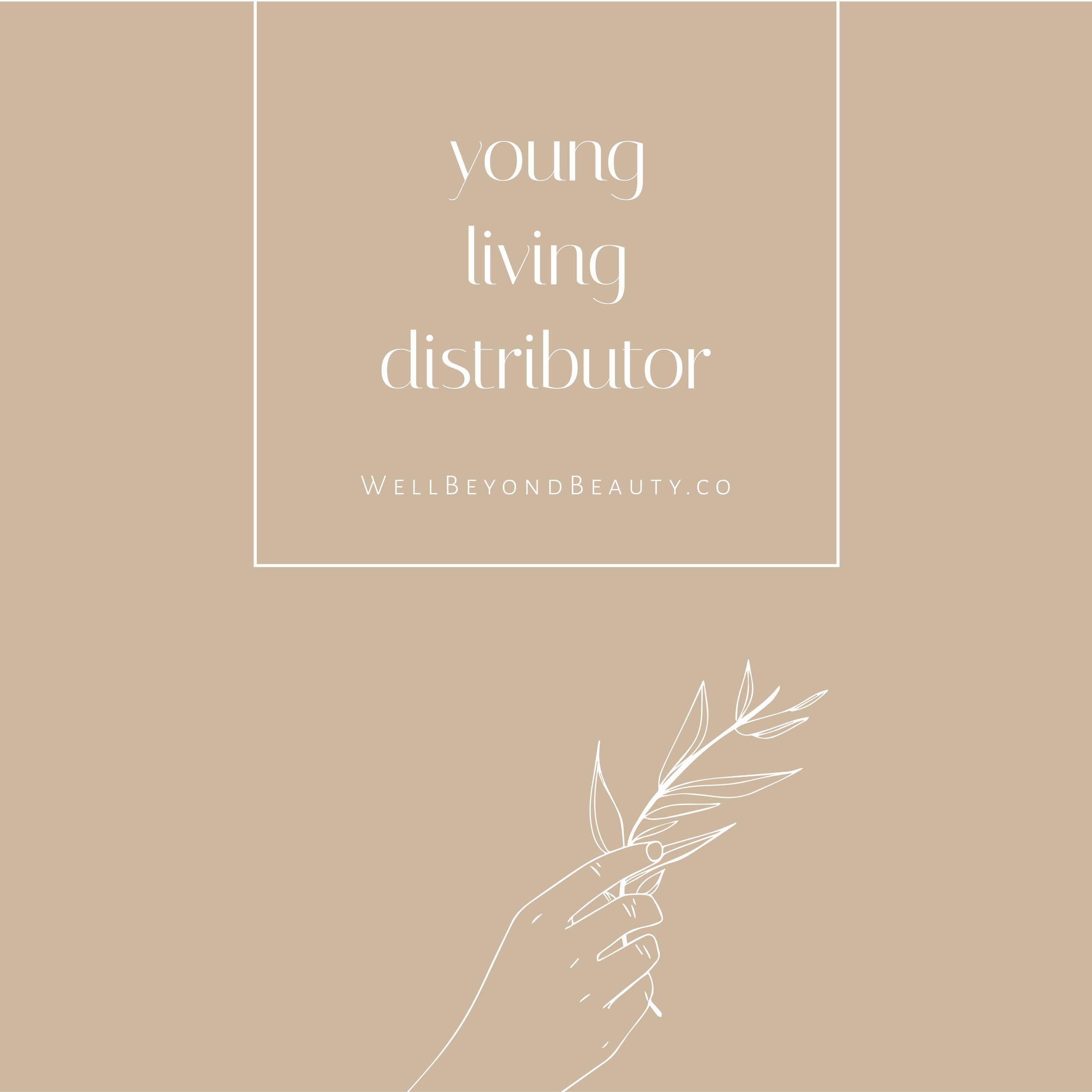 YL Distributor.png
