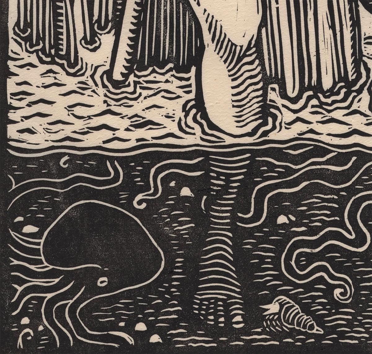 magrove detail 4.jpg