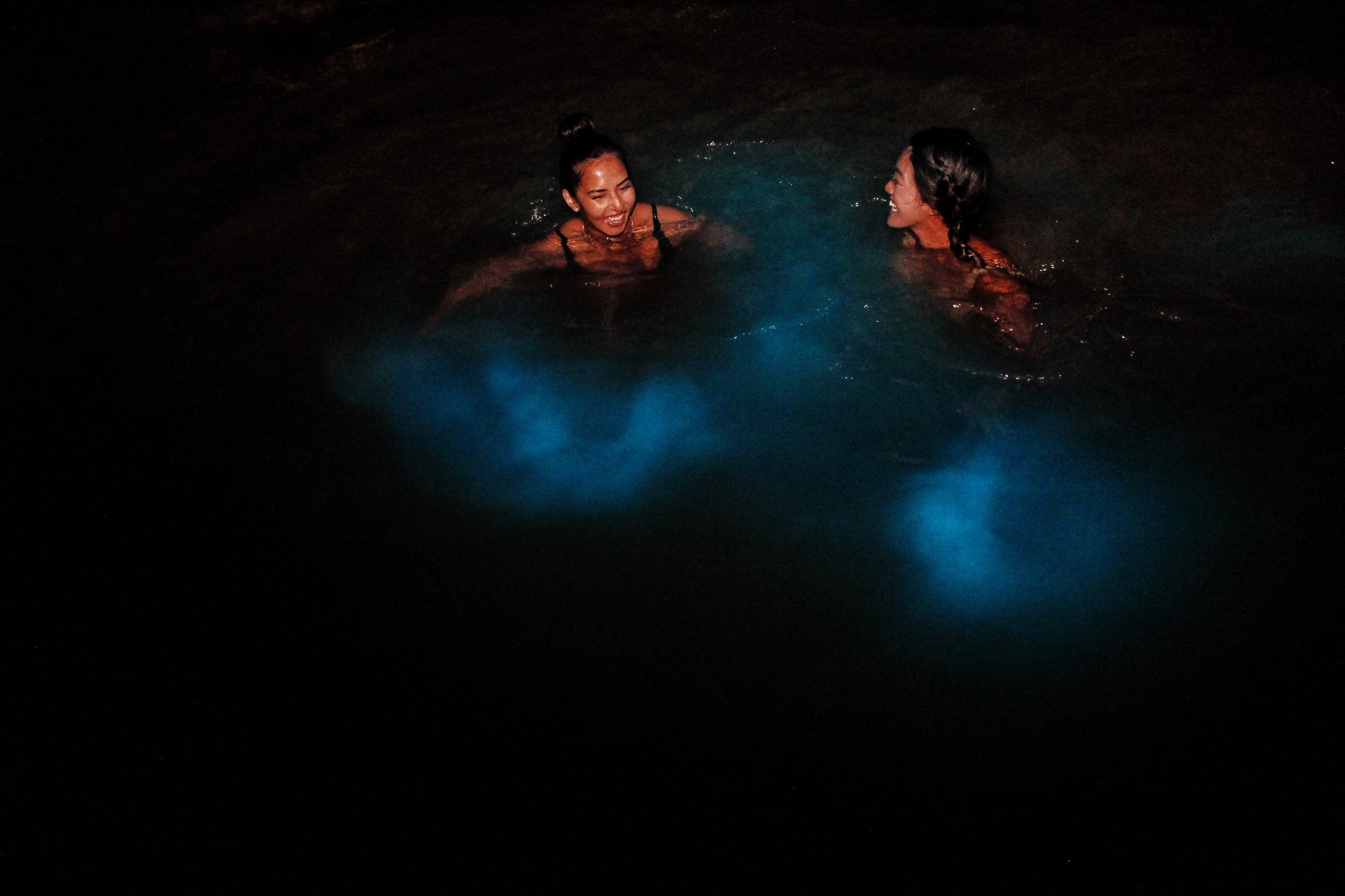 luminous lagoon Jamaica