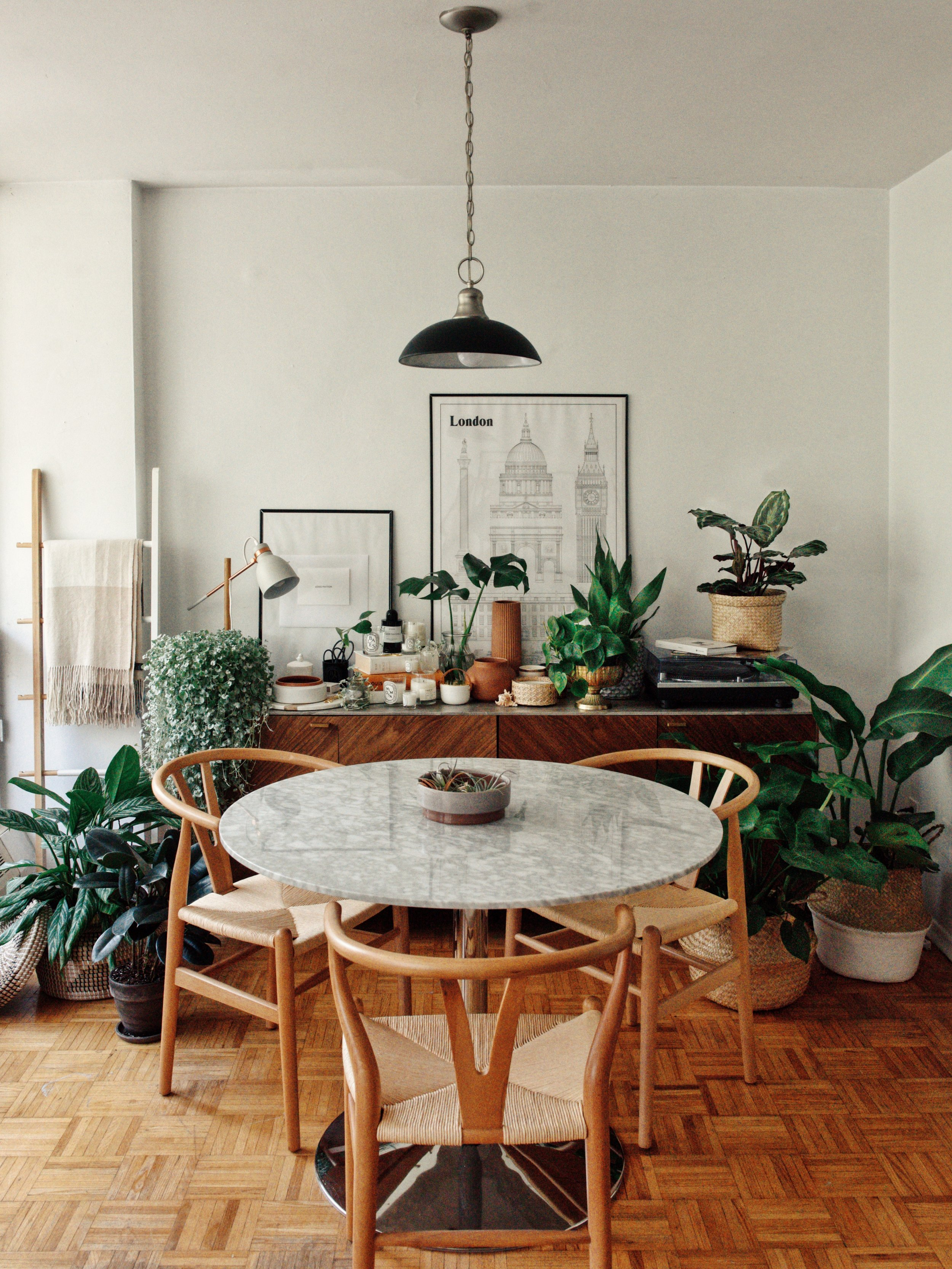 plants interior structube