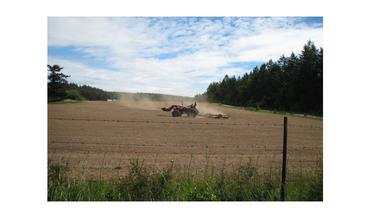 Typical disking of field after plowing.