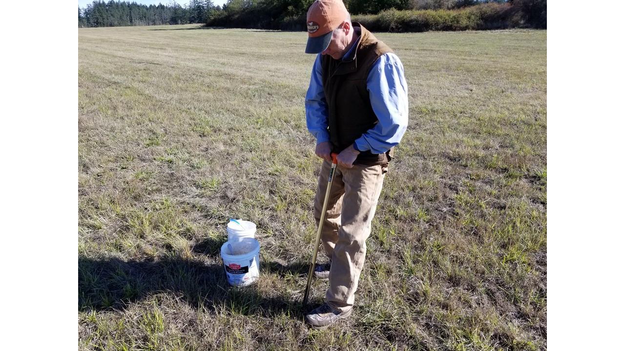 Pulling a soil sample.