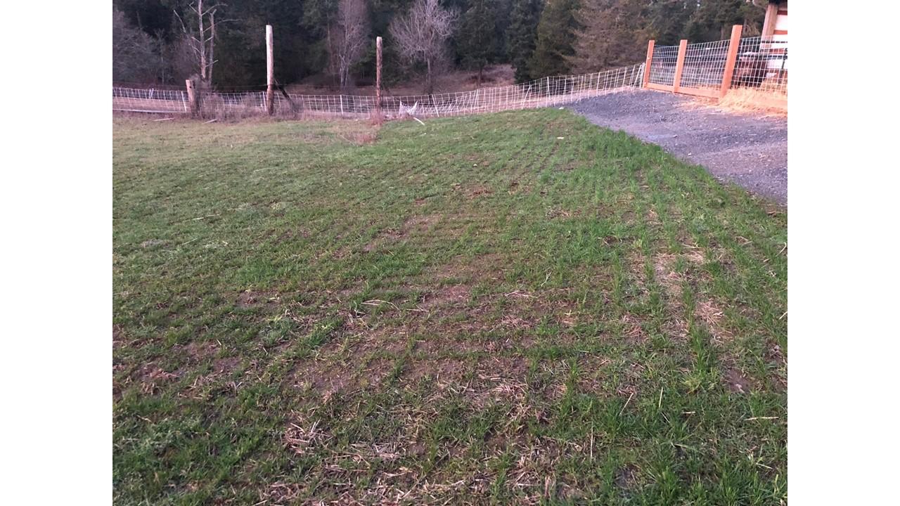 Early spring seeding success at 3B Farm, SJI