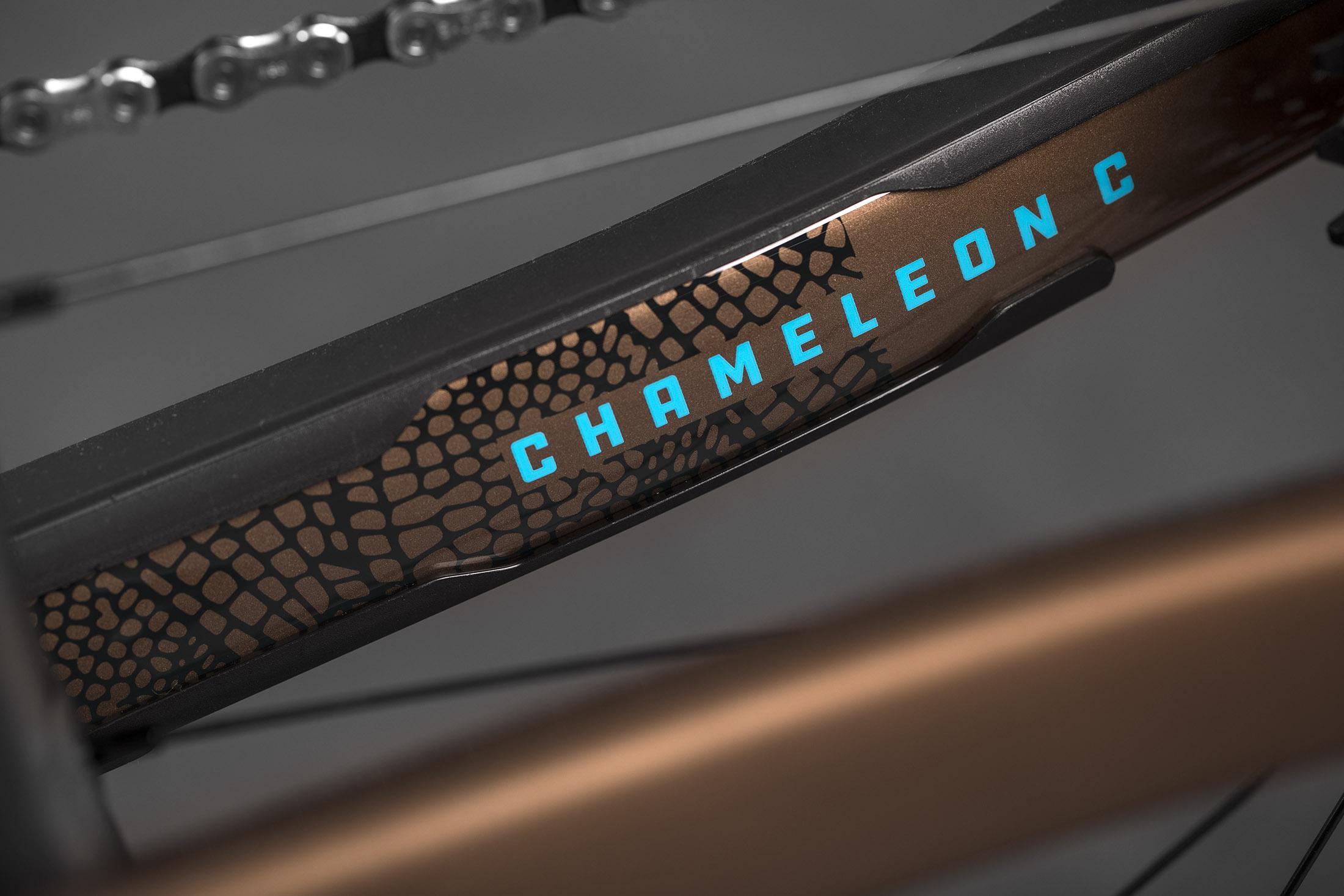 Chameleon_Studio4.jpg