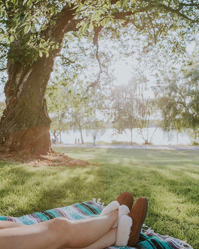 Friday hangs spent sharing a beer 🍻 with @megejones and enjoying the evening light through the trees 🍃 . . . #staheekum #greenlake #seattle #greenlakeseattle #pnw #pnwonderland #northwest #northwestisbest