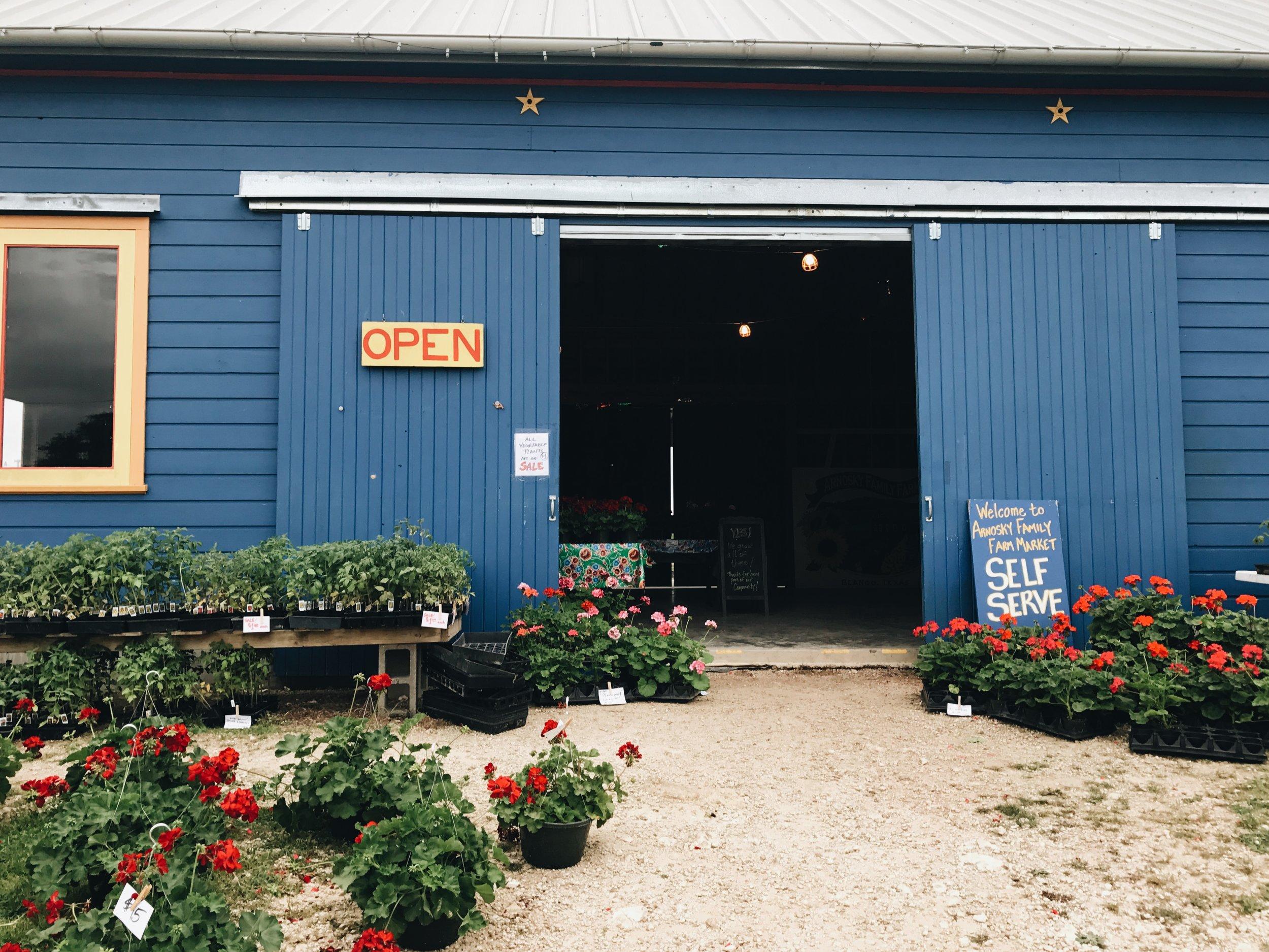 Texas Specialty Cut Flowers - Blanco, TX