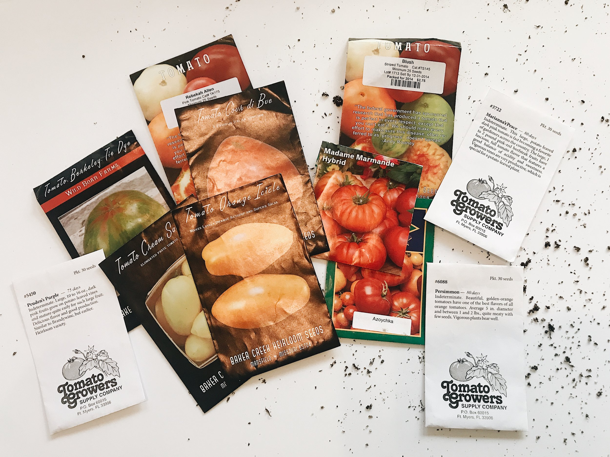 Tomato Seeds to Grow at Home