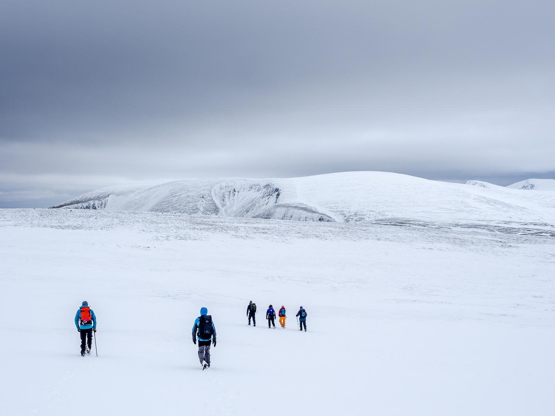 Snowfield, Cairngorms National Park, Scotland.